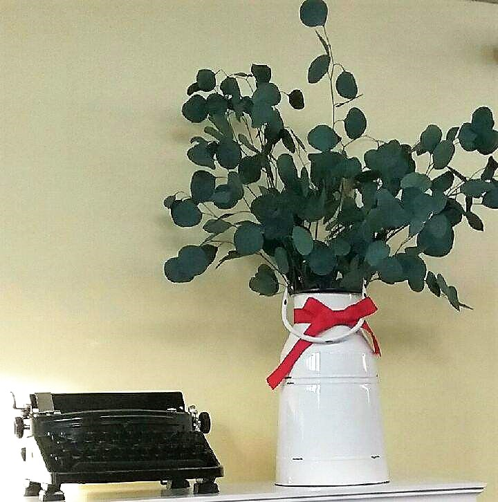 plant and typewriter